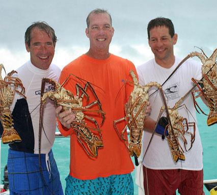 Lobsters in der Karibik
